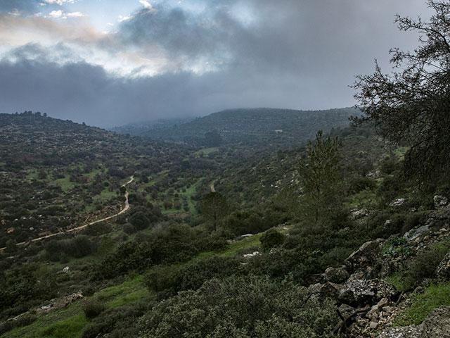 Дожди на севере и в центре Израиля: необычная погода для середины июня