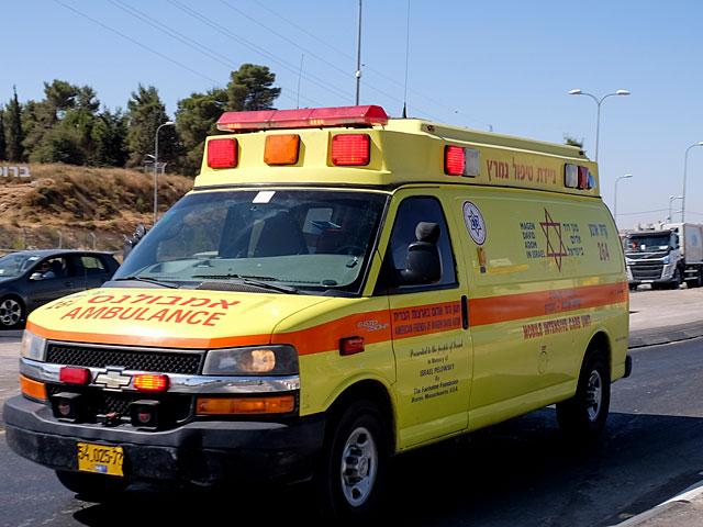 ЧП на Голанах: после укуса змеи турист упал и ударился головой