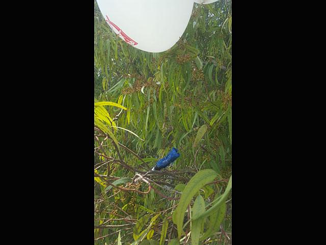 Воздушный шар с привязанной к нему гранатой обнаружен в Эшколе