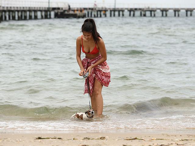 Аномальная жара в Австралии
