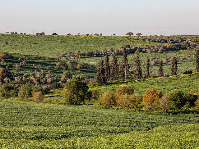 На севере Израиля