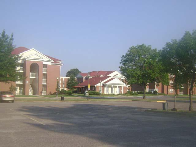 Университет Арканзаса учредил стипендию имени профессора-отрицателя Холокоста