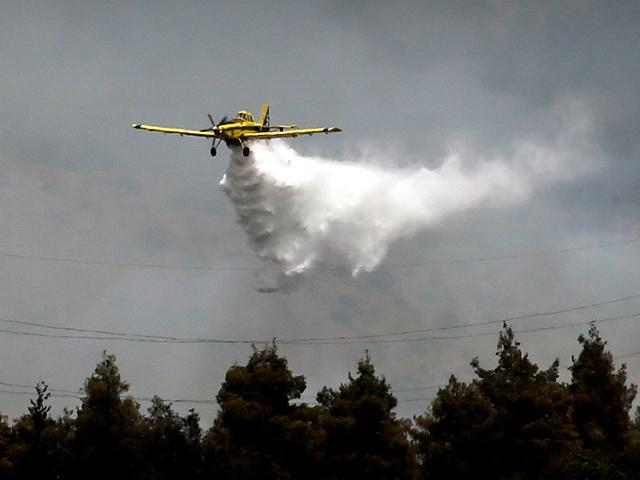 В лесном массиве регионального совета Мегиддо вспыхнули пожары