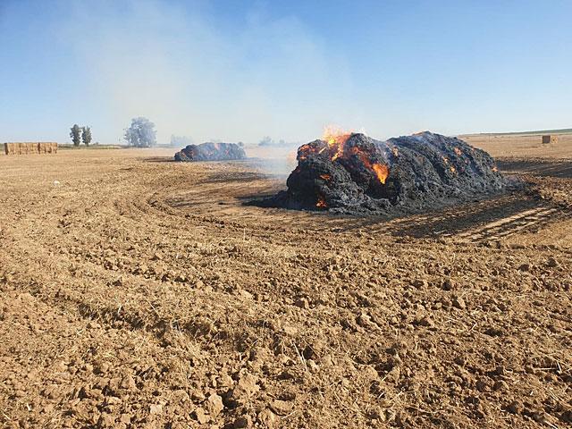 Горит пшеничное поле возле кибуца Гевим