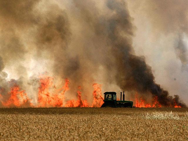 В Шаар а-Негев горит пшеничное поле