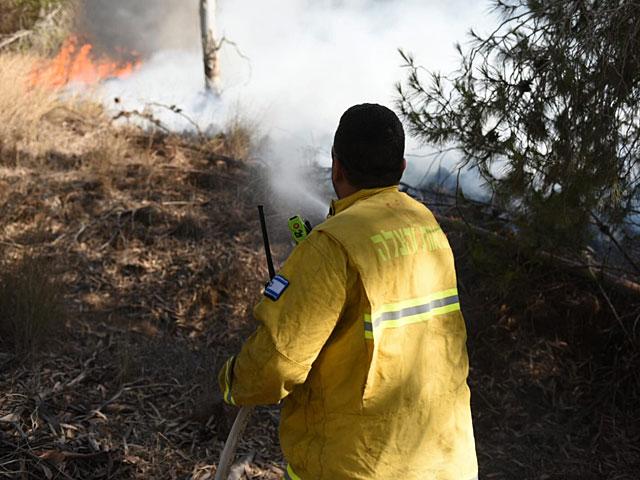 Пожары на границе с Газой: причины возгораний проверяются