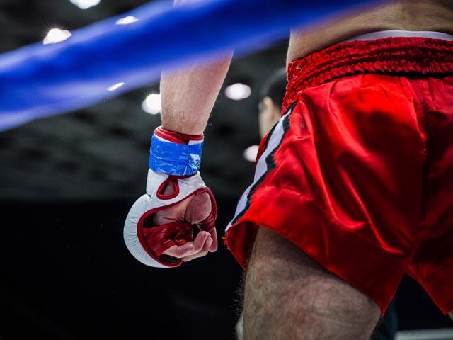 UFC. Блахович нокаутировал Андерсона в матче-реванше