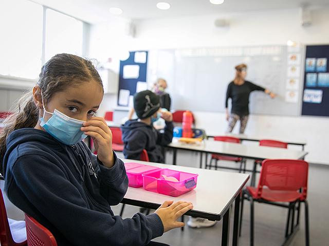 Правительство решило не переводить школы на дистанционное обучение