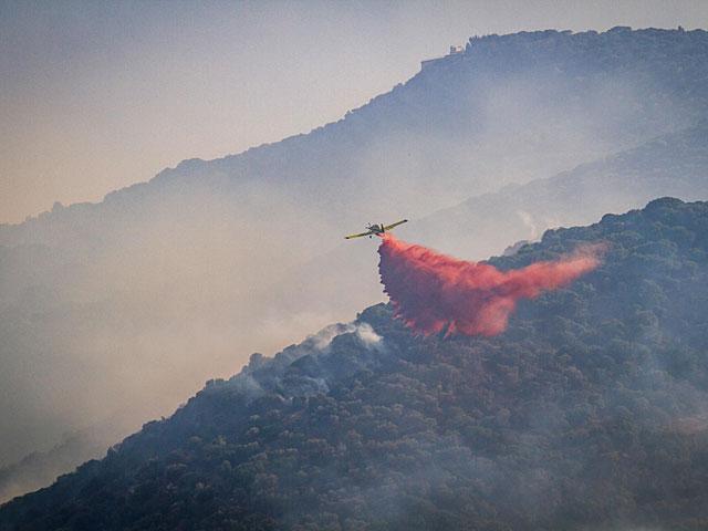 В Западной Галилее возник сильный лесной пожар
