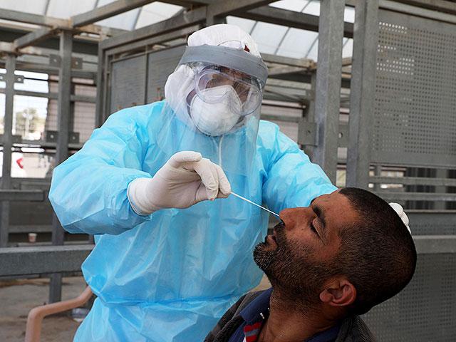 Коронавирус в Палестинской автономии: 82 умерших, более 6100 выздоровевших