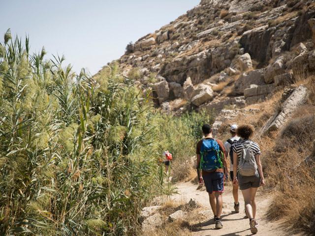 Туристы в районе Вади Кельт (иллюстрация)