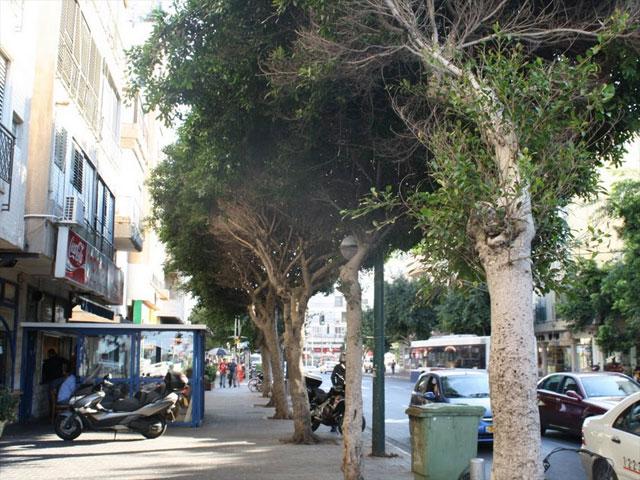 Тель Авив via Кемерово