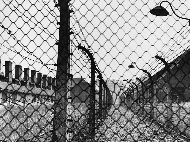 Die Welt: Воспоминания об Освенциме должны стать предостережением