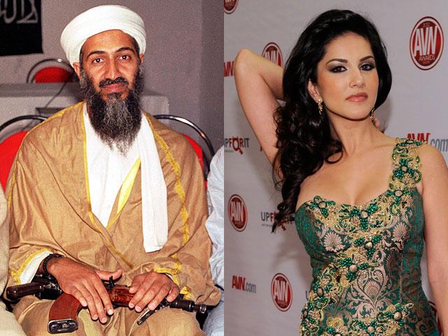 Известный режиссер выясняет, какое порно смотрел бин Ладен перед