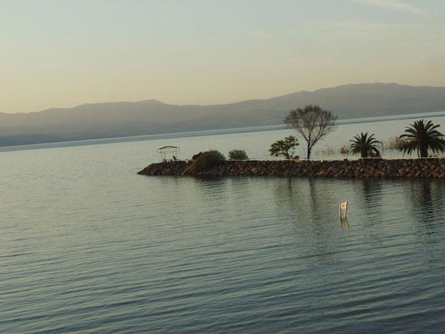 На берегу Кинерета