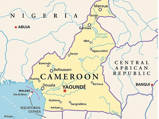 Девочка-подросток совершила теракт в мечети на севере Камеруна, погибл