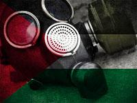"""ОЗХО: """"Государство Палестина"""" присоединилась к конвенции по химоружию"""