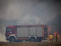 Ведется тушение лесного пожара возле поселка Таль-Эль