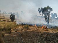 """На границе с Газой возникают новые пожары, вызванные """"огненными шарами"""""""