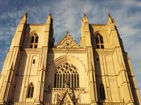 В Нанте вспыхнул пожар в кафедральном соборе святых Петра и Павла; не исключен поджог