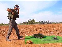 Армия США приступает к испытаниям израильской системы защиты против воздушных угроз Skylord