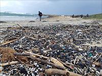 Запрещены к публикации сведения о расследовании экологической катастрофы в Израиле