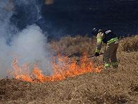 Возгорание травы и кустарника на западной окраине Иерусалима. Ведется эвакуация жителей