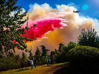 Пожар в Иерусалимских горох, эвакуированы жильцы не мене пяти поселков
