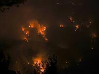 В Иерусалимских горах сгорели 17 кв. км. леса, продолжаются поиски одного пропавшего без вести
