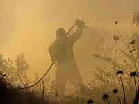 """Глава службы пожарной охраны: """"Нет необходимости в иностранной помощи"""""""