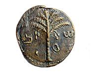 Монета с изображением пальмы и именем Шимона