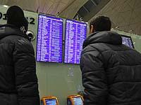 """Самолет авиакомпании """"Россия"""", летевший из Антальи в Санкт-Петербург, попал в стаю птиц"""