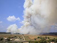 Пожар в лесу возле Хадеры; на место прибыли несколько пожарных расчетов