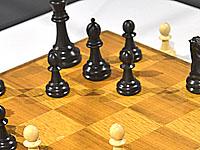 Победителем шахматной онлайн-олимпиады стала сборная России