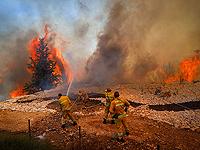 Лесной пожар вспыхнул возле друзской деревни Магар