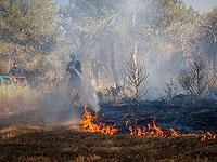 Лесной пожар к востоку от Хайфы, перекрыта 781-я трасса