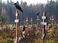 Коронавирусный антирекорд в России: объявлено о 984 умерших от COVID-19 за сутки
