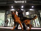 У собаки 756 обонятельных рецепторов - у мыши их 1120