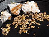 Золото, платина, метеориты и кости динозавров: в Швейцарии построен самый дорогой особняк