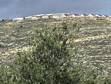 Поселок Эли (Самария)
