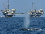 """Новый отчет по """"Левиатану"""": газа будет больше, нефти – меньше"""