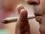 Минздрав удвоит количество врачей, имеющих право выписывать марихуану
