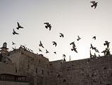 Около Стены Плача охранник застрелил еврея