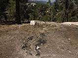 На месте обнаружения тела подростка 2 июля 2014 года