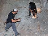 На месте падения ракеты в Верхней Галилее. 23 августа 2014 года