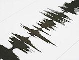 Восемь человек погибли в результате землетрясения в Перу