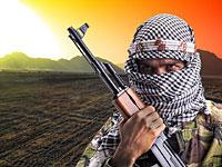 Исламский ученый утверждает: главная причина джихада – порнография