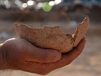 """Керамика, обнаруженная на месте строительства офисного здания в районе моста """"Маарив"""" в Тель-Авиве"""