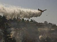 Под Бейт-Шемешем вспыхнул лесной пожар