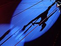 Воздушная гимнастка упала с большой высоты во время представления в московском цирке